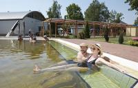 Tiszakécske Hotel Barack gyógy és termálvizes  medencéje akciós wellness hétvégére