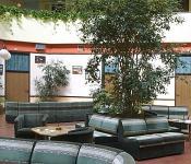 Gyógyszálló Sárváron - Termál és wellness Hotel Sárvár